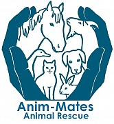 animal rescue kent, Anim-mates,